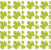 Leave grape seamless pattern design. Illustration eps 10 Royalty Free Stock Photography