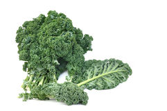 Leave of kale cabbage Stock Image