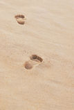 Leave nothing but footprints. Foot prints of a lady at the beach Royalty Free Stock Photos