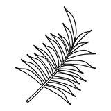 Leave palm tropical flora thin line. Vector illustration eps 10 Stock Image