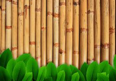 Leave of plant  on bamboo background Stock Image