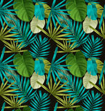 Leave seamless pattern. Tropical palm leaves seamless pattern Royalty Free Stock Photography