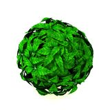 Leaf sphere stock image