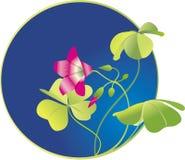 leaved blomningväxt av släkten Trifolium fyra stock illustrationer