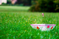 Leaved child umbrella on green grass Royalty Free Stock Photos