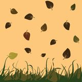 Leaves. Falling leaves background, vector illustration Royalty Free Stock Photography
