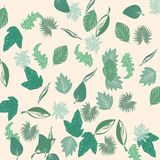 Leaves. Background illustration, isolated objects Royalty Free Stock Photos