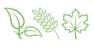 Leaves. Green Nature Icons. Part 3 - Leaves Stock Illustration