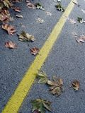 Leaves. Autumn on the street Royalty Free Stock Images
