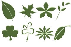 Leaves. Eight green leaves that are isolated Royalty Free Stock Photos