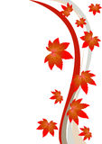 Leaves. Illustration of autumn leaves on white background Stock Images