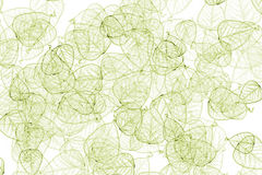 Leaves Abstract. A background made from delicate leaves royalty free stock photo