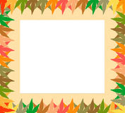 Leaves abstract frame Stock Photography