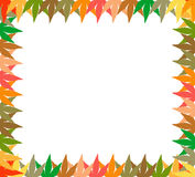 Leaves abstrasct frame design Stock Photography