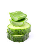 Leaves of aloe Vera and two slices of cucumber. Stock Photos