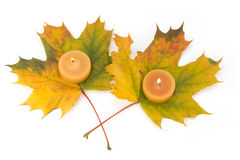 Leaves And Tea Lights Stock Photography