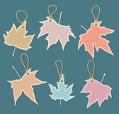 Leaves as shopping elements Stock Image