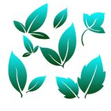 Blue Leafs for Simple Logo. Leaves as a symbol of plant fertility, prosperity, freshness and often used as a logo in business and enterprise Stock Photo
