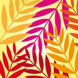 Leaves autumn Stock Image