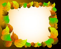 Leaves of the autumn garden. Bright frame Royalty Free Stock Photos