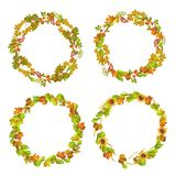 Leaves and autumn plants gathered in neat wreaths. Dry colorful leaves and autumn plants gathered in neat round wreaths isolated cartoon flat vector Royalty Free Stock Images