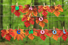 Leaves,autumn and school. royalty free stock image