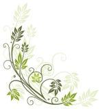 Leaves, autumn, spring stock illustration