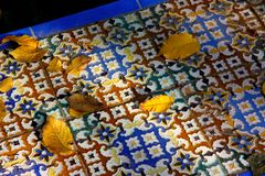 Leaves on the azulejos, Seville Royalty Free Stock Images