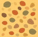 Leaves Background Royalty Free Stock Photo