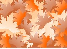 Leaves background. Background of colorful maple leaves Royalty Free Stock Images