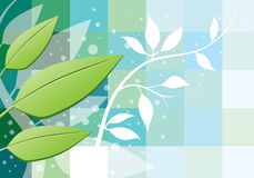 Leaves Background. An illustration of green leaves on an abstract background Stock Photos