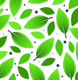 Leaves Background. Leaves pattern background with big leaves Stock Photos