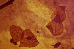 Leaves background. Abstract leaves stock illustration