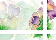 Leaves background with flowers with two strip Royalty Free Stock Photo