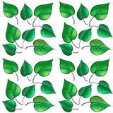 Summer Leaf pattern Stock Image