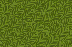 Leaves background pattern - vector illustration Stock Images