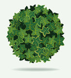 Leaves Ball Royalty Free Stock Photo
