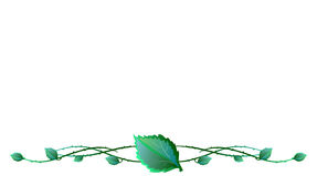 Leaves with barbed wire Stock Photo