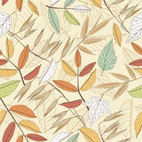 Leaves on a beige background Royalty Free Stock Image
