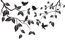 Leaves and birds Stock Image