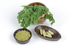 Leaves of the Bitter cucumber-chinese (Moringa oleifera Lam.) Processed into Bitter cucumber-chinese. Powder packed in capsules. Stock Image