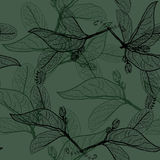 Leaves black contours on dark olive dark khaki green background.  Royalty Free Stock Images