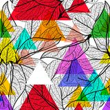 Leaves black contours, Rainbow magenta pink orange blue lilac purple green modern trendy background. floral seamless pattern, hand. Drawn. Geometric abstract Royalty Free Stock Photography