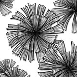 Leaves black and white illustrations vector illustration