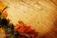 Leaves on a board Royalty Free Stock Photography