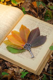The leaves on the book. Colorful autumn leaves on an old book. Vintage key. Autumn. Background of colorful autumn leaves Royalty Free Stock Photography