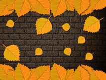 Leaves and brick wall Royalty Free Stock Images