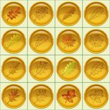 Leaves buttons, set. Set of yellow round buttons with autumn leaves and pictograms, dogrose, oak, raspberry, oak iberian, maple. Eps10, contains transparencies Stock Images