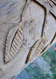 Leaves carved in tree. Bark Stock Photos