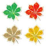 Leaves of chestnut tree grunge sticker Stock Images